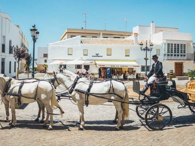 La boda de Luis y Maria Jose en La Ballena, Cádiz 27