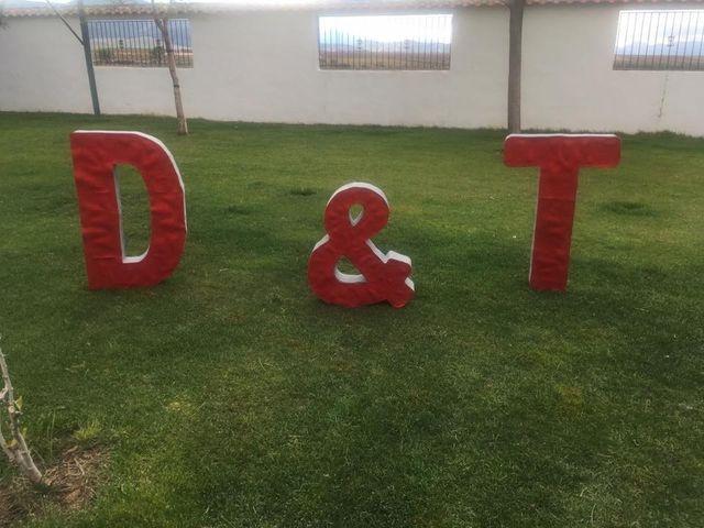 La boda de David y Tamara en Granada, Granada 24