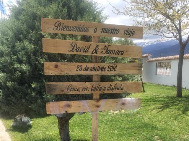 La boda de David y Tamara en Granada, Granada 26