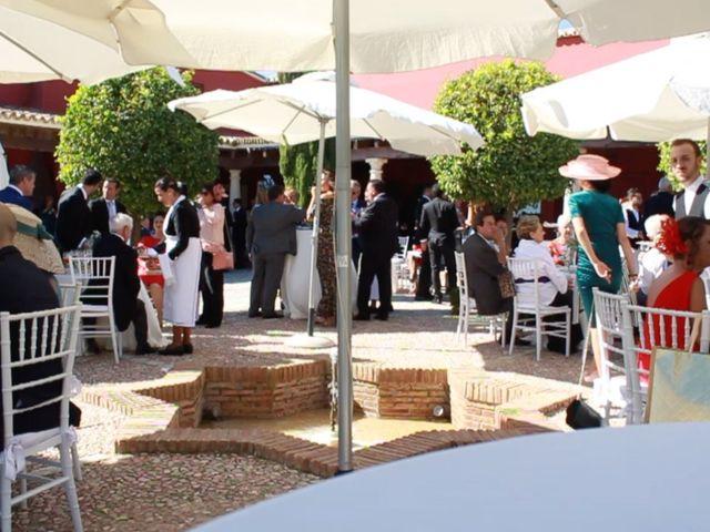 La boda de Javier y Paula en Jerez De La Frontera, Cádiz 12