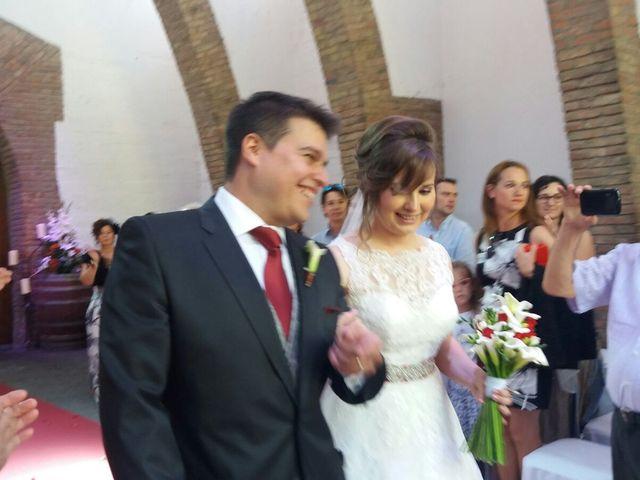La boda de Alicia y Germán