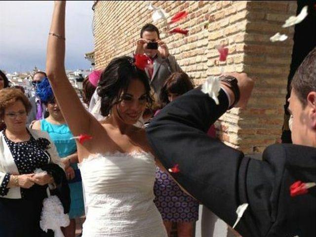 La boda de Manuel y Tania en Viso Del Alcor, Sevilla 5