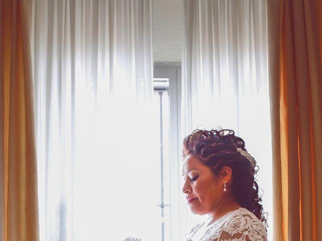 La boda de Martiza y Manuel en Pilas, Sevilla 1