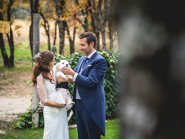 La boda de Fran y Vanessa en Guadarrama, Madrid 31