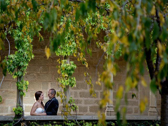 La boda de Vicente y Rebeca en San Juan Mozarrifar, Zaragoza 3