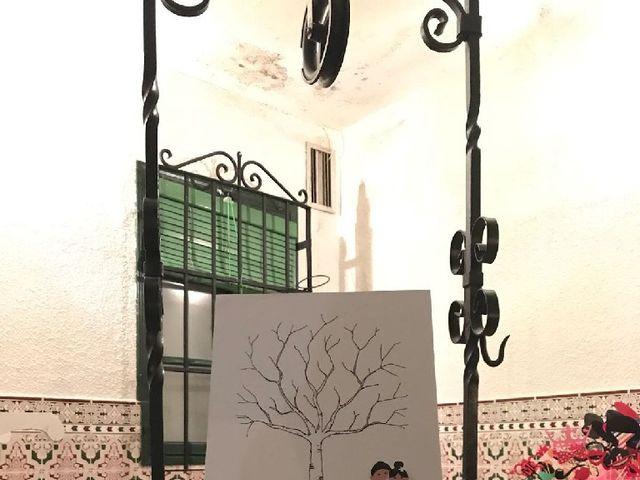 La boda de Mario y Sandra en Alba De Tormes, Salamanca 14