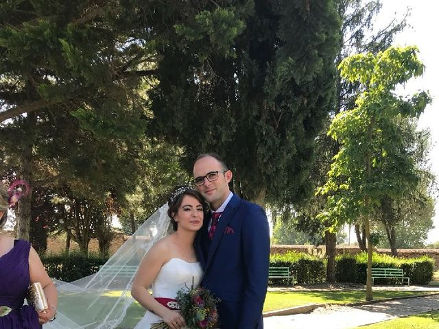 La boda de Mario y Sandra en Alba De Tormes, Salamanca 18