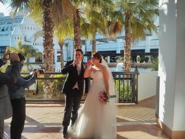La boda de Fran y Sabrina en Estepona, Málaga 25