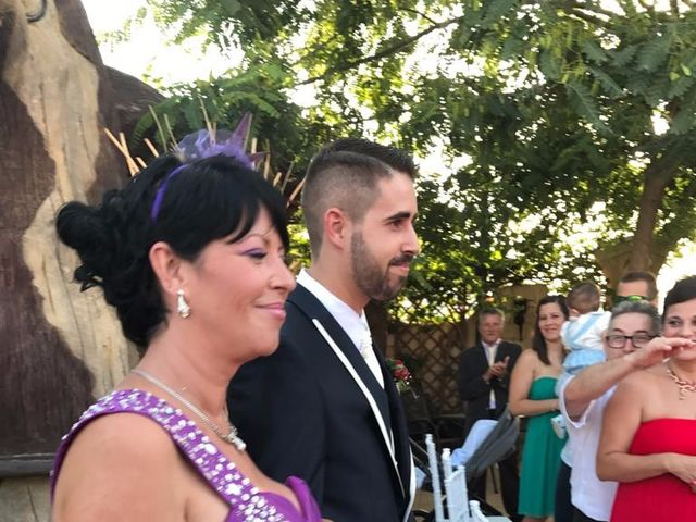 La boda de David  y Azahara en Elx/elche, Alicante 3