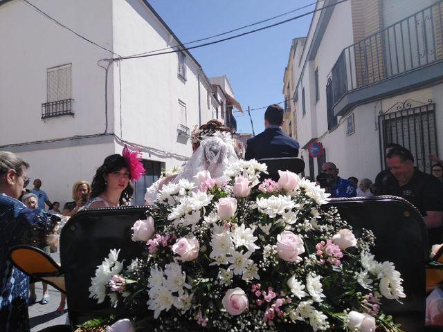 La boda de Juan Luis  y María de la Cabeza  en Torredonjimeno, Jaén 23