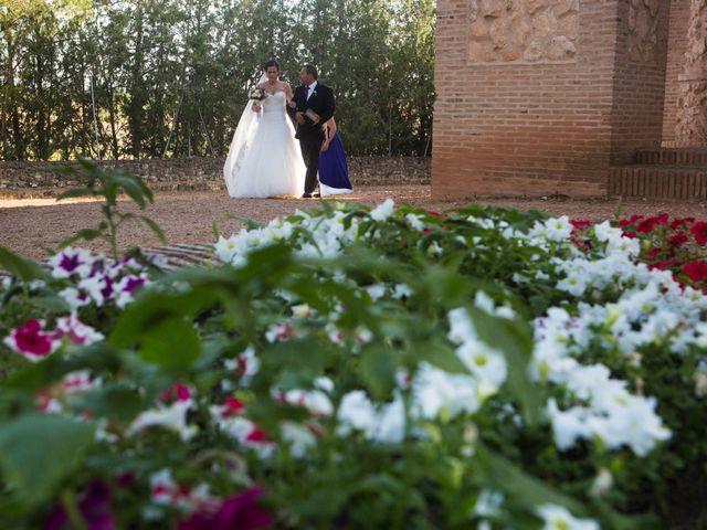 La boda de Pedro y Cristina en Villarrubia De Los Ojos, Ciudad Real 25