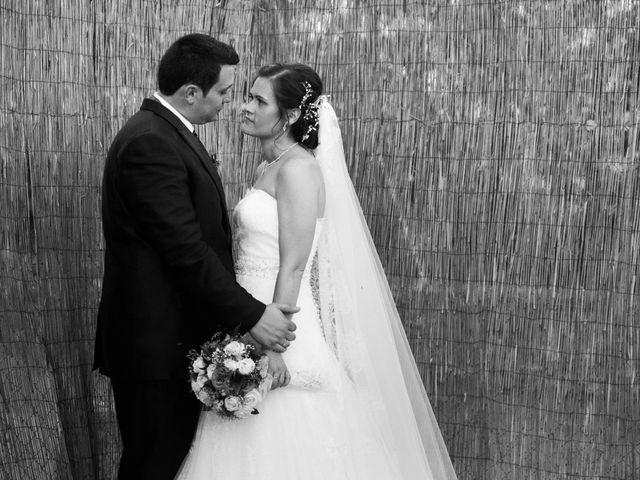 La boda de Pedro y Cristina en Villarrubia De Los Ojos, Ciudad Real 38
