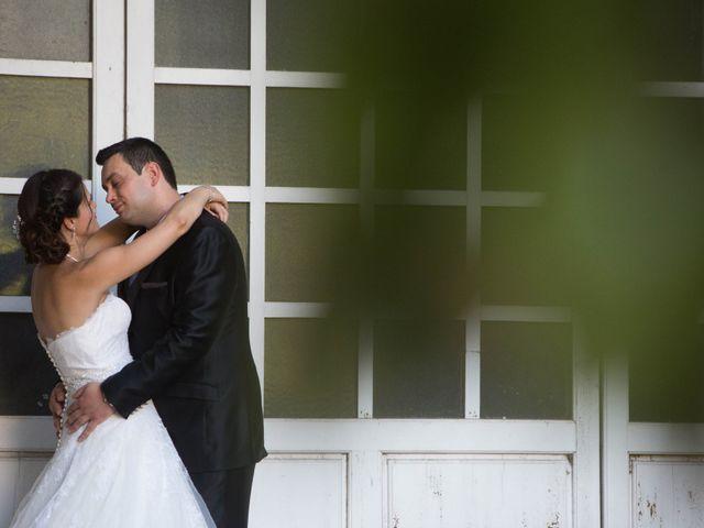 La boda de Pedro y Cristina en Villarrubia De Los Ojos, Ciudad Real 2