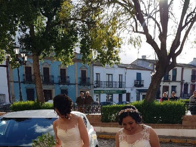 La boda de Irene y Ada en Manzanilla, Huelva 3