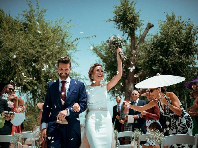 La boda de Antonio y Helena en Jerez De La Frontera, Cádiz 49