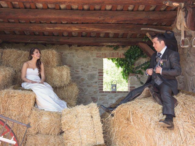 La boda de Sergi y Cris en Sant Fost De Campsentelles, Barcelona 5