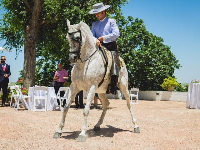 La boda de Bill y Bea en Jerez De La Frontera, Cádiz 11