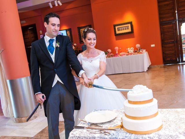 La boda de Sergio y Susana en Alhaurin De La Torre, Málaga 12