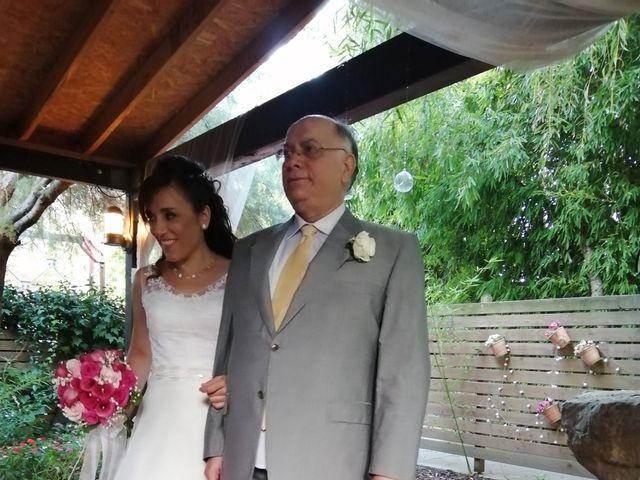 La boda de Pedro y Virginia en Palau De Plegamans, Barcelona 17