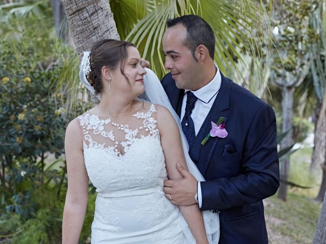 La boda de Pedro y Yazmina en Elx/elche, Alicante 26