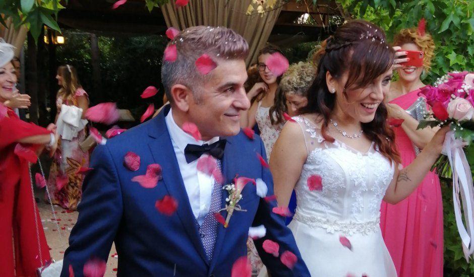 La boda de Pedro y Virginia en Palau De Plegamans, Barcelona