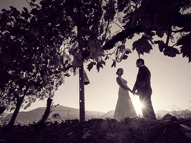La boda de Fernando y Olga en Lardero, La Rioja 37