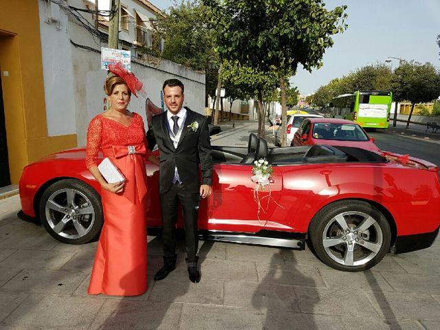 La boda de Antonio José  y Rosa  en Córdoba, Córdoba 7