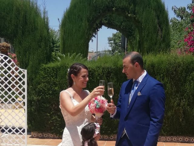 La boda de Manuel y Irene en Alcala De Guadaira, Sevilla 6