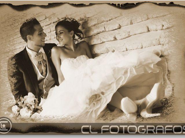 La boda de Víctor y Iris  en Batres, Madrid 3