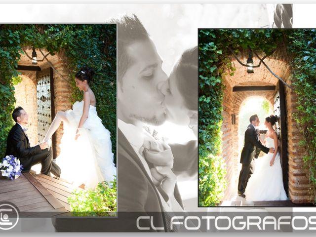La boda de Víctor y Iris  en Batres, Madrid 4