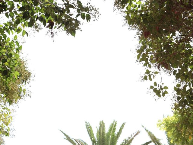 La boda de David y Pepi en Petrer, Alicante 13