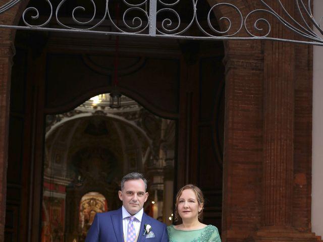 La boda de Mamen y Julio en Málaga, Málaga 28