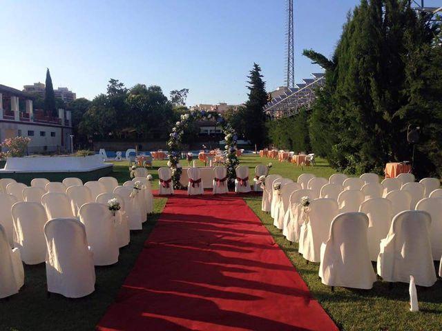 La boda de Alejandro  y Cristina en Hellin, Albacete 4
