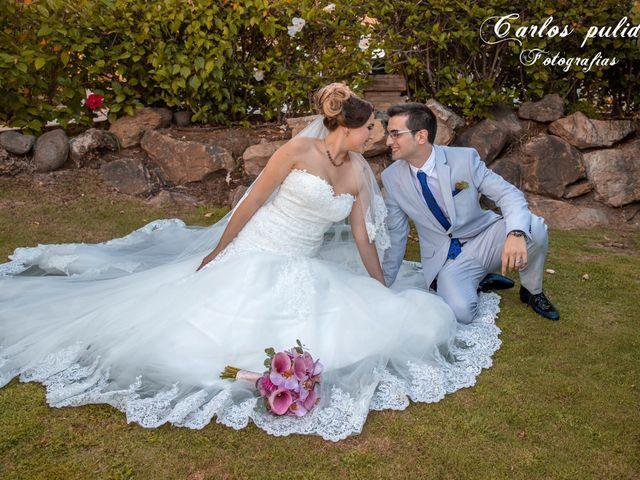 La boda de Fran y Rocio en San Pedro Alcantara, Málaga 1