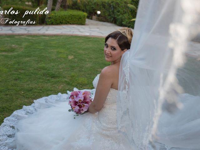 La boda de Fran y Rocio en San Pedro Alcantara, Málaga 2
