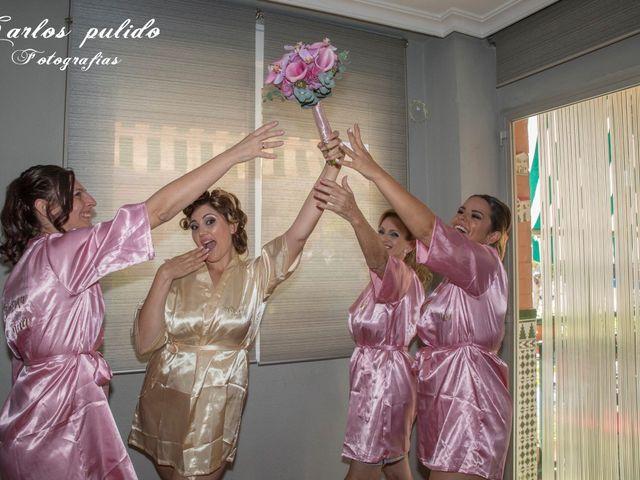 La boda de Fran y Rocio en San Pedro Alcantara, Málaga 6