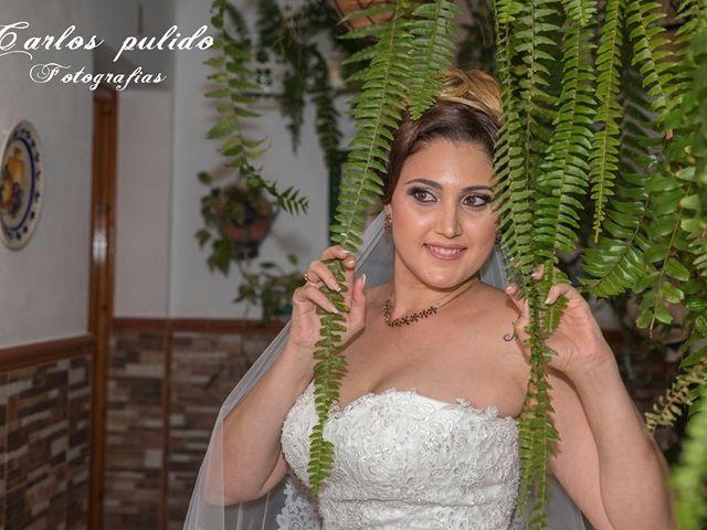 La boda de Fran y Rocio en San Pedro Alcantara, Málaga 8