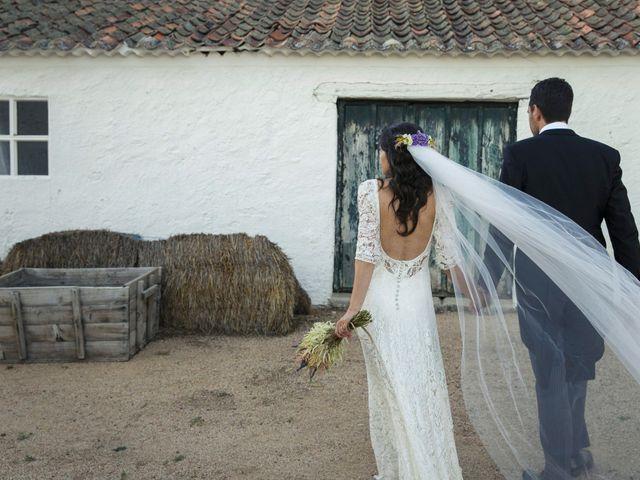 La boda de David y Alicia en Otero De Herreros, Segovia 8