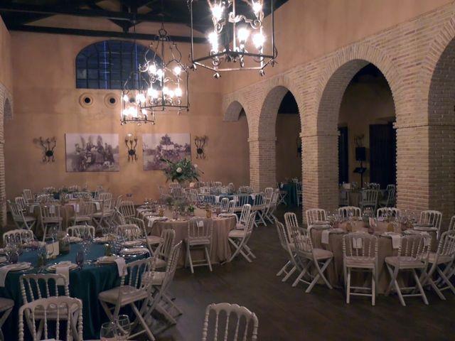 La boda de Estela y Cayetano en Carmona, Sevilla 17