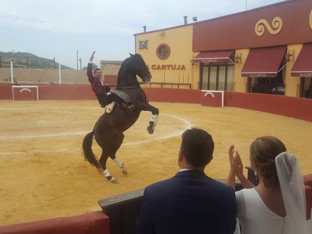 La boda de Francisco Javier  y Evelyn  en Cartagena, Murcia 12