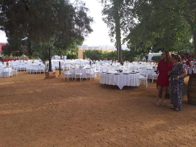 La boda de Miguel y Marisa en Huercal Overa, Almería 4