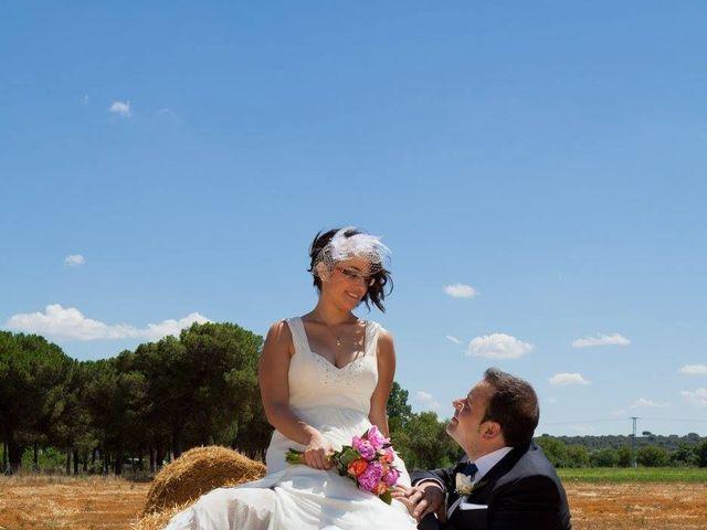 La boda de Julio y Carla en Laguna De Duero, Valladolid 29