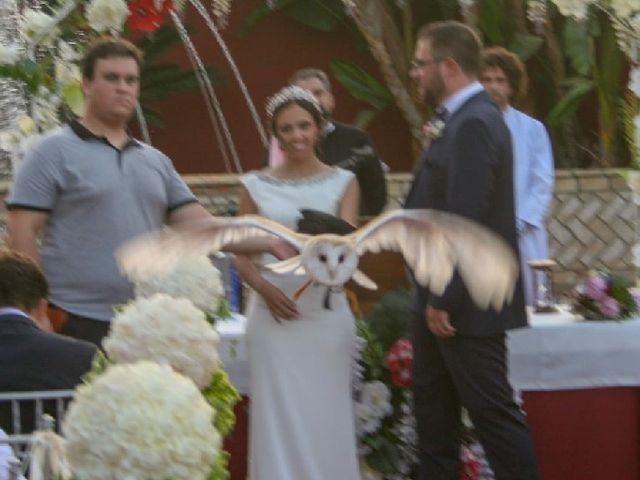 La boda de José y Inma  en Salteras, Sevilla 1