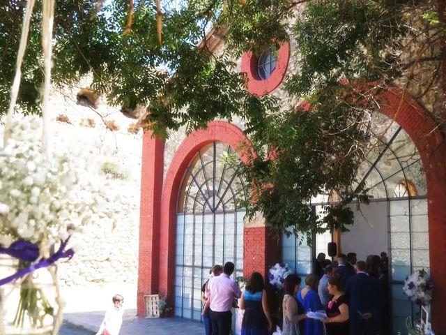 La boda de Fran y Cecilia en Seron, Almería 10