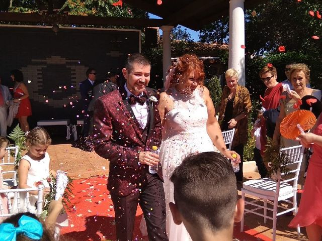 La boda de Pedro  y Carmen  en Ciudad Real, Ciudad Real 1