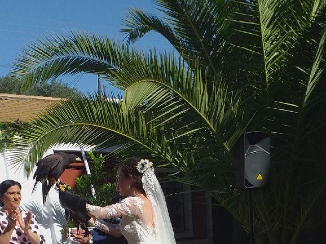 La boda de Jose  y Marta en Sanlucar La Mayor, Sevilla 3