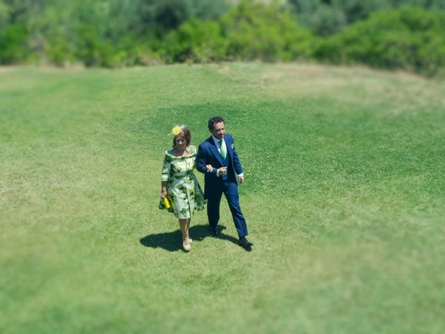 La boda de Javier y Cristina en Toledo, Toledo 33