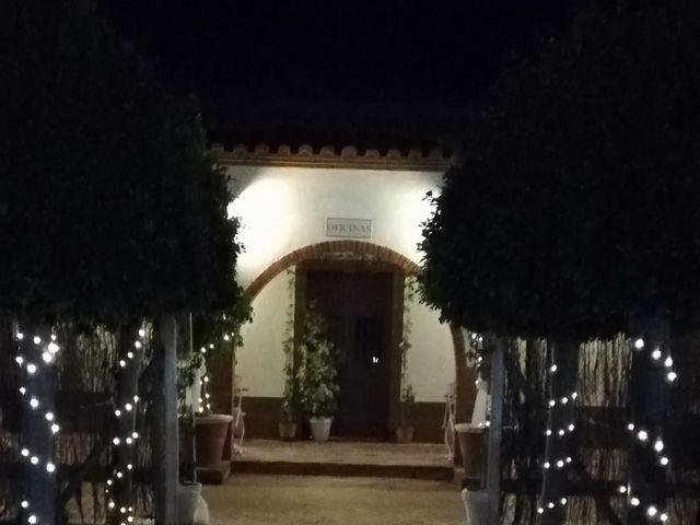 La boda de Ismael    y Helena   en Algeciras, Cádiz 10