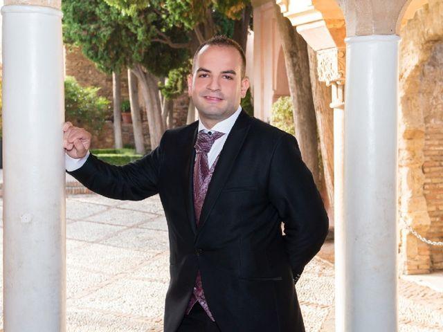 La boda de Daniel  y Yolanda en Málaga, Málaga 10