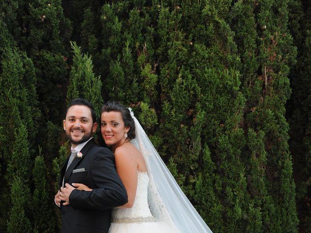 La boda de Antonio y Lidia en Petrer, Alicante 45